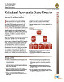 Criminal Appeals in State Courts